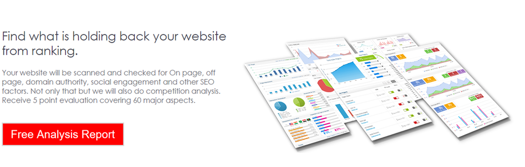 Tree Root Solutions LLC FREE SEO Audit Report